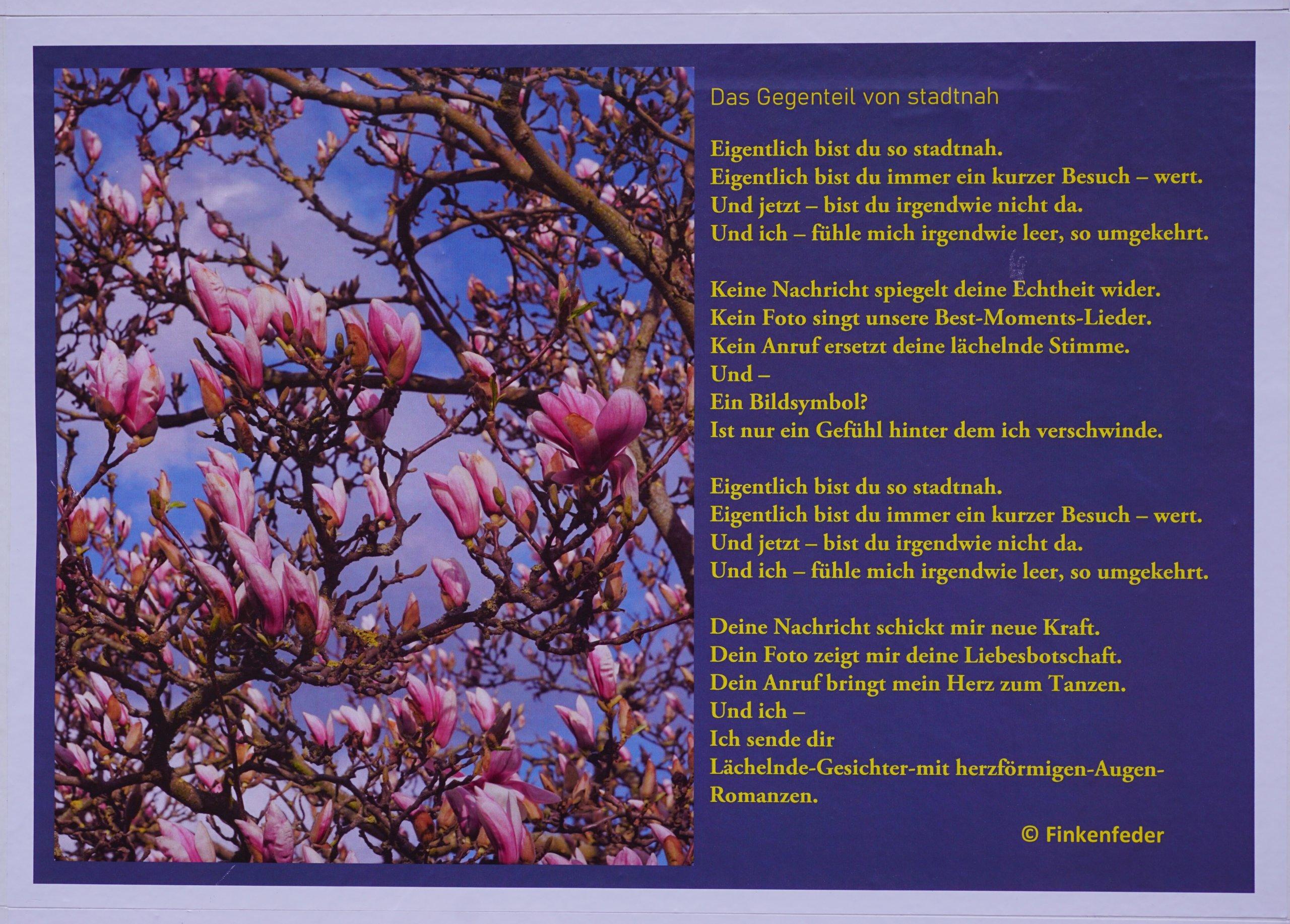 Das Bild zeigt ein Gedicht zur Thematik Kontaktbeschränkungen in Coronazeiten von einer Bürgerin.